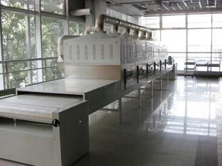 微波大豆烘烤设备