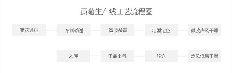 贡菊生产线