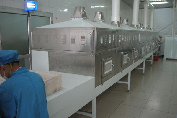 微波干燥设备的传动系统