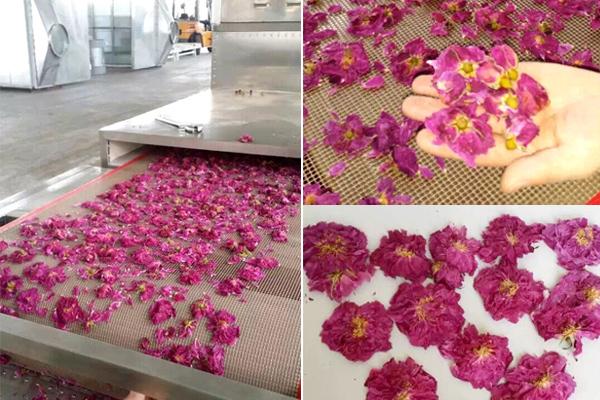 玫瑰花烘干设备 微波烘干设备效果显著
