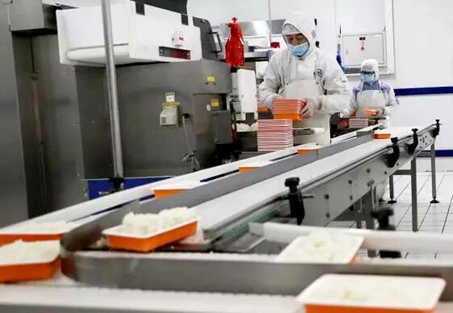 盒饭微波加热设备 盒饭微波回温杀菌设备助力高铁盒饭生产全过程