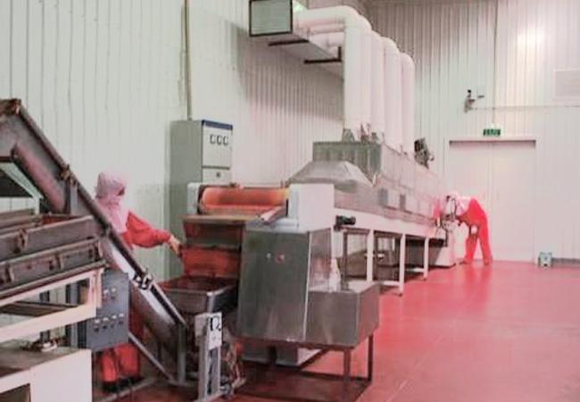 调味品微波真空干燥设备,保持原有品质