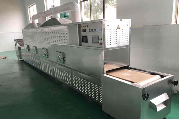 微波干燥设备行业发展现状以及展望
