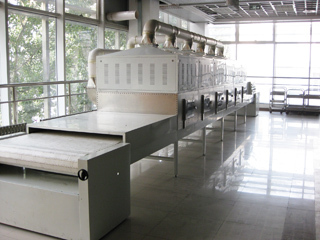 隧道式微波干燥设备