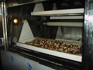 农产品微波烘烤设备