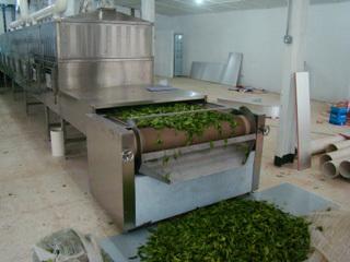 微波茶葉烘干設備