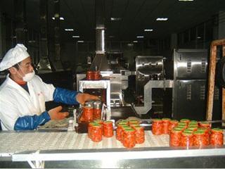 微波泡菜杀菌设备