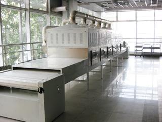 微波锂盐干燥杀菌设备